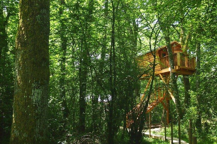 Basoa Suites En Navarra Dormir En Un árbol